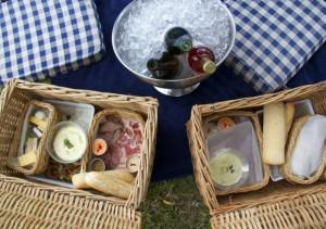 Picnic at Groot Constantia