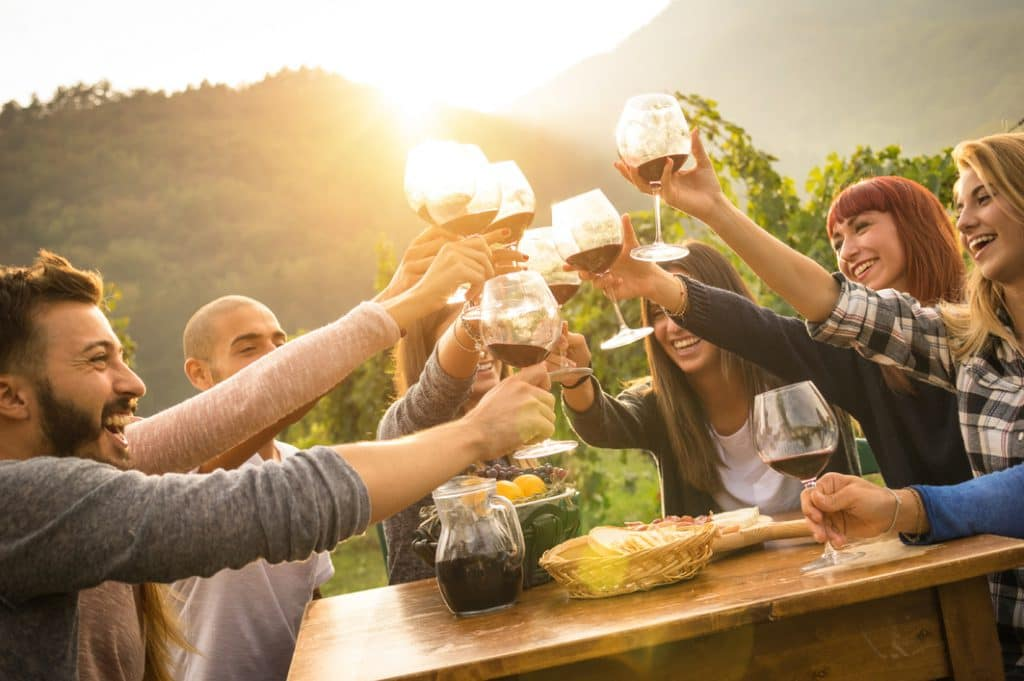 Friends toasting each other with wine at party outdoors