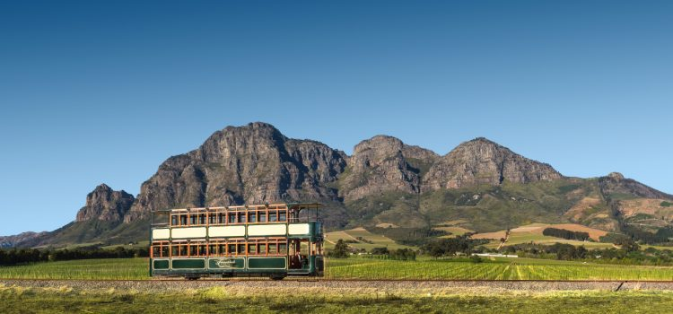 Why the Franschhoek Wine Tram should be on your bucket list