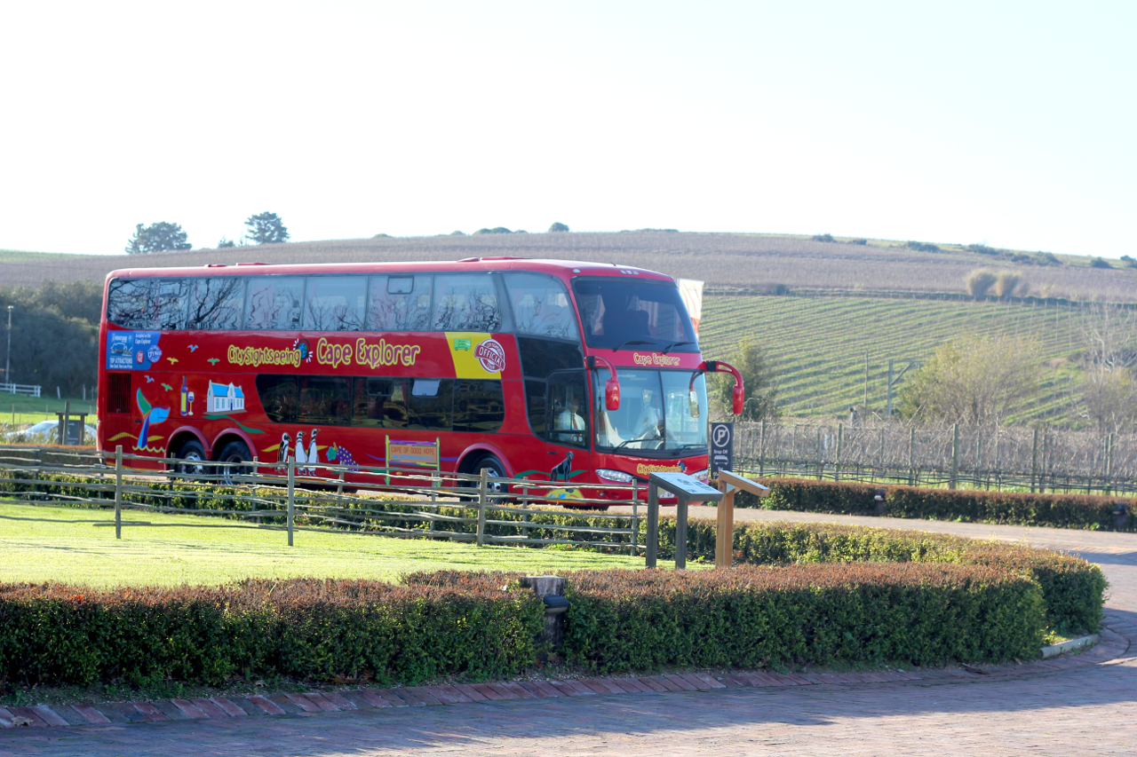 City Sightseeing Cape Town Wine Tram transfer