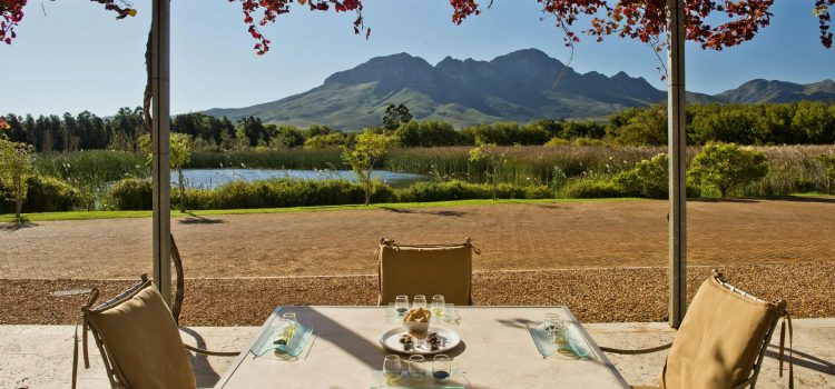 Your complete guide to wine-tasting in Cape Town
