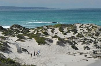 De Hoop Collection Nature Reserve