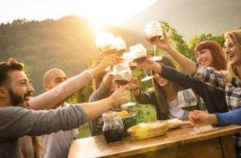 A beginner's guide to South African wine