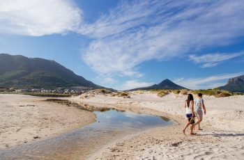 Travel like a local: Your neighbourhood guide to Hout Bay