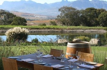 Wine, safaris and amazing views with Jordan Wine Estate