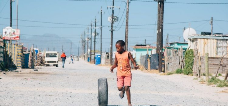 From plants to paint in Khayelitsha