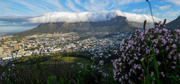 Book your entire Cape Town experience with our partners