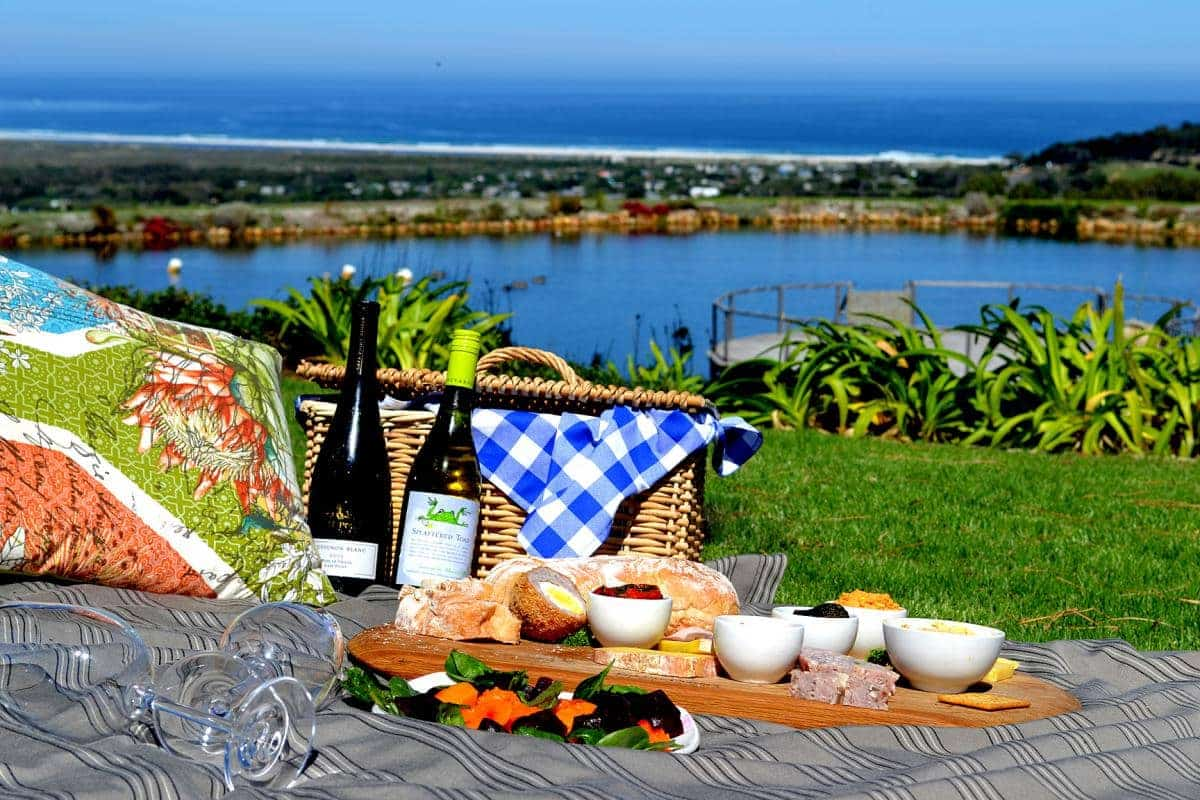 The Cape Point Vineyard