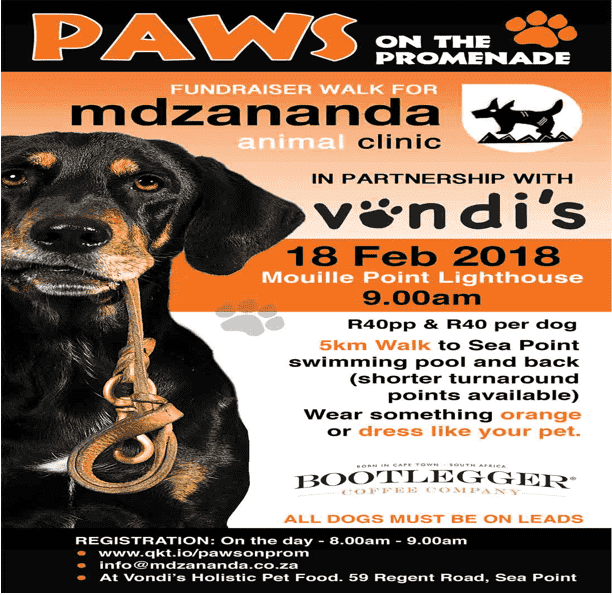 Paws on the Promenade Dog Walk Fundraiser | Cape Town Travel