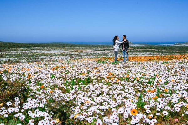 A couple enjoy the wild flowers at the West Coast National Park