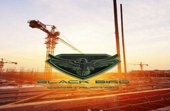 Black Bird Construction