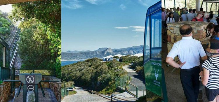 Take in the view from the tip of the Cape Peninsula