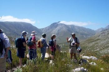 Gantouw Tours and Excursions