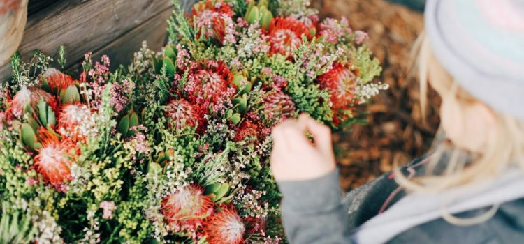 Where to pick fruit and flowers in and around Cape Town