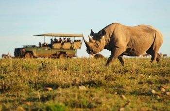 Southern Africa 360