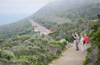 Cape Point Ostrich Farm