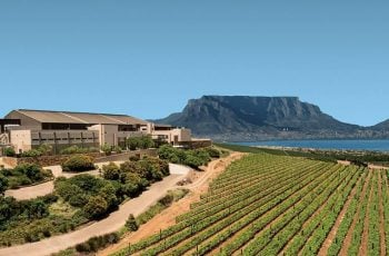 Durbanville Hills Winery