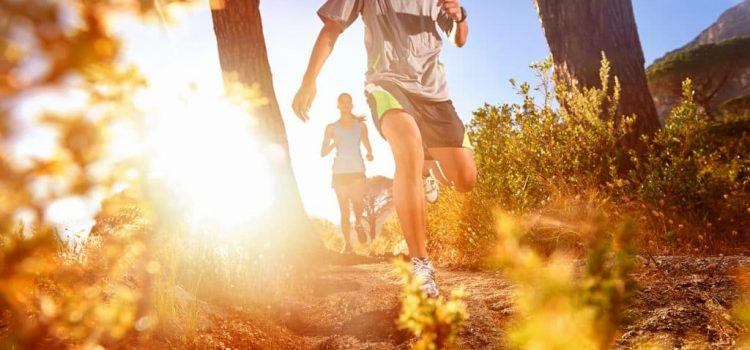 Best Trail Runs in Cape Town