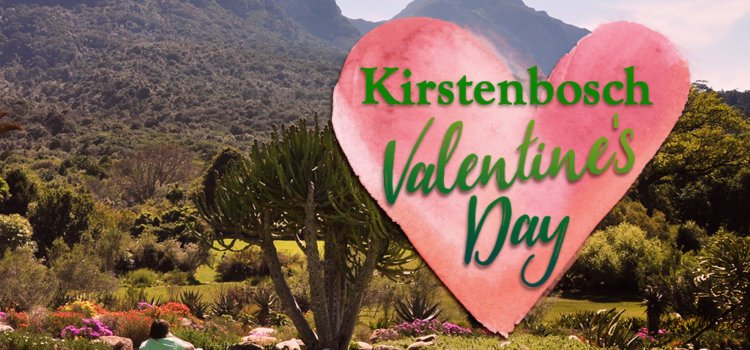 Enjoy Valentine's Day in Cape Town's most beautiful garden
