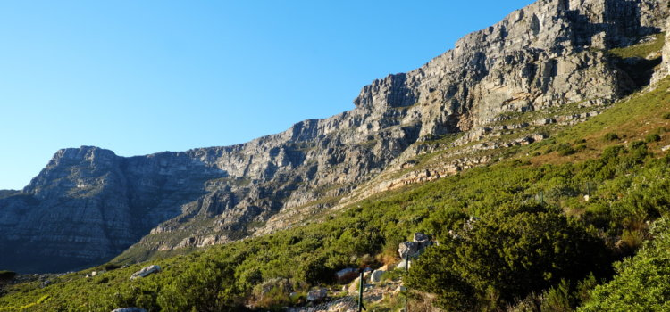 Take a hike in an effort to protect Table Mountain