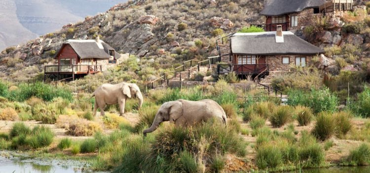 Unmissable attractions in Cape Town
