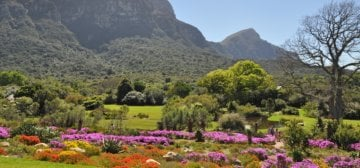 Kirstenbosch introduces dual pricing